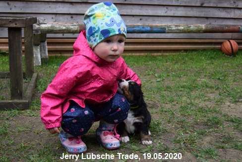 Jerry Lübsche Trade, 19.05.2020