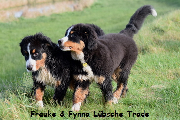 Frauke & Fynna Lübsche Trade